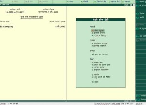 How to use Tally ERP 9 in Hindi Language using  phonetic keyboard ?
